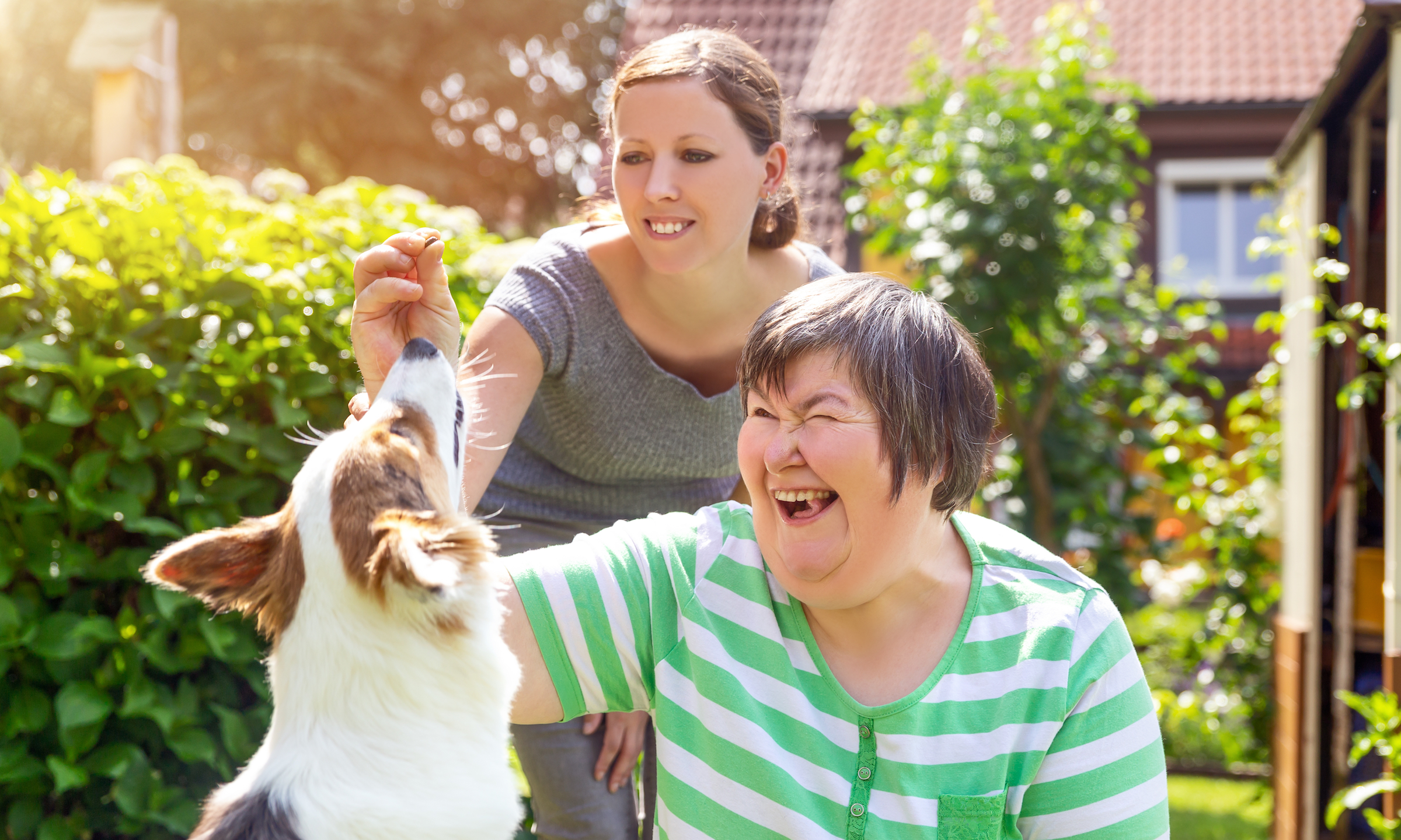 woman gives dog a treat with staff member